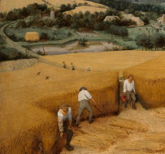 Peasants harvesting grain, oil painting by Pieter Bruegel the Elder, 1565. Image: Wikipedia, in the public domain